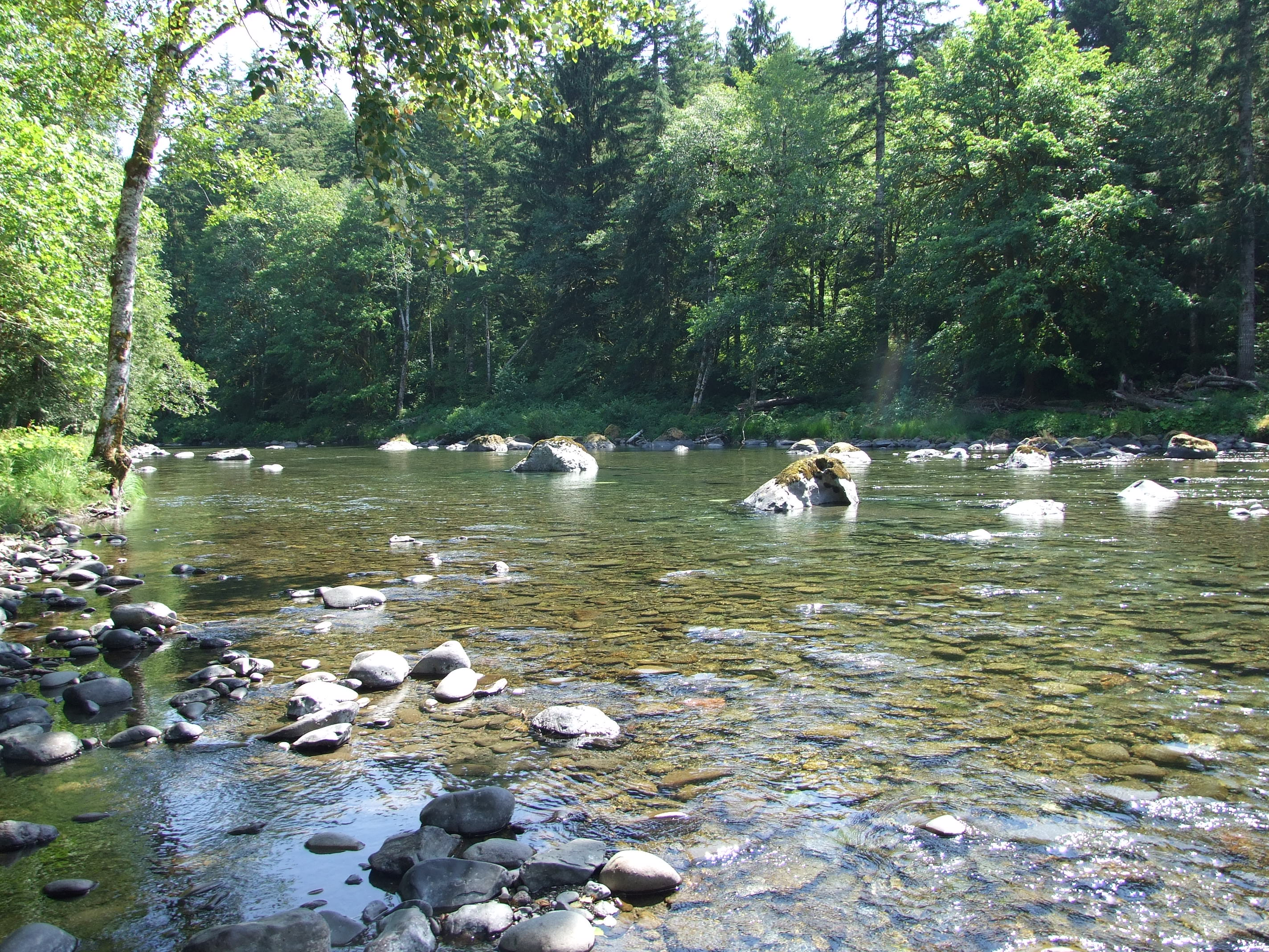 The river looking upstream at Sol Duc Riverside Cottages