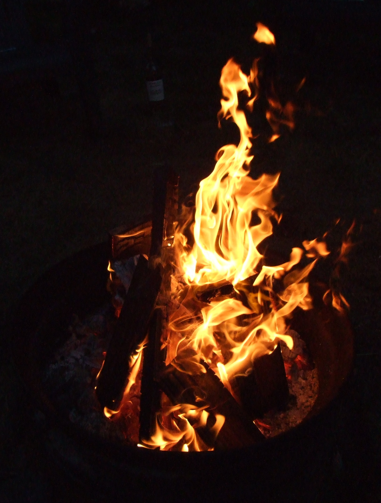 The fire pit at Sol Duc Riverside Cottages