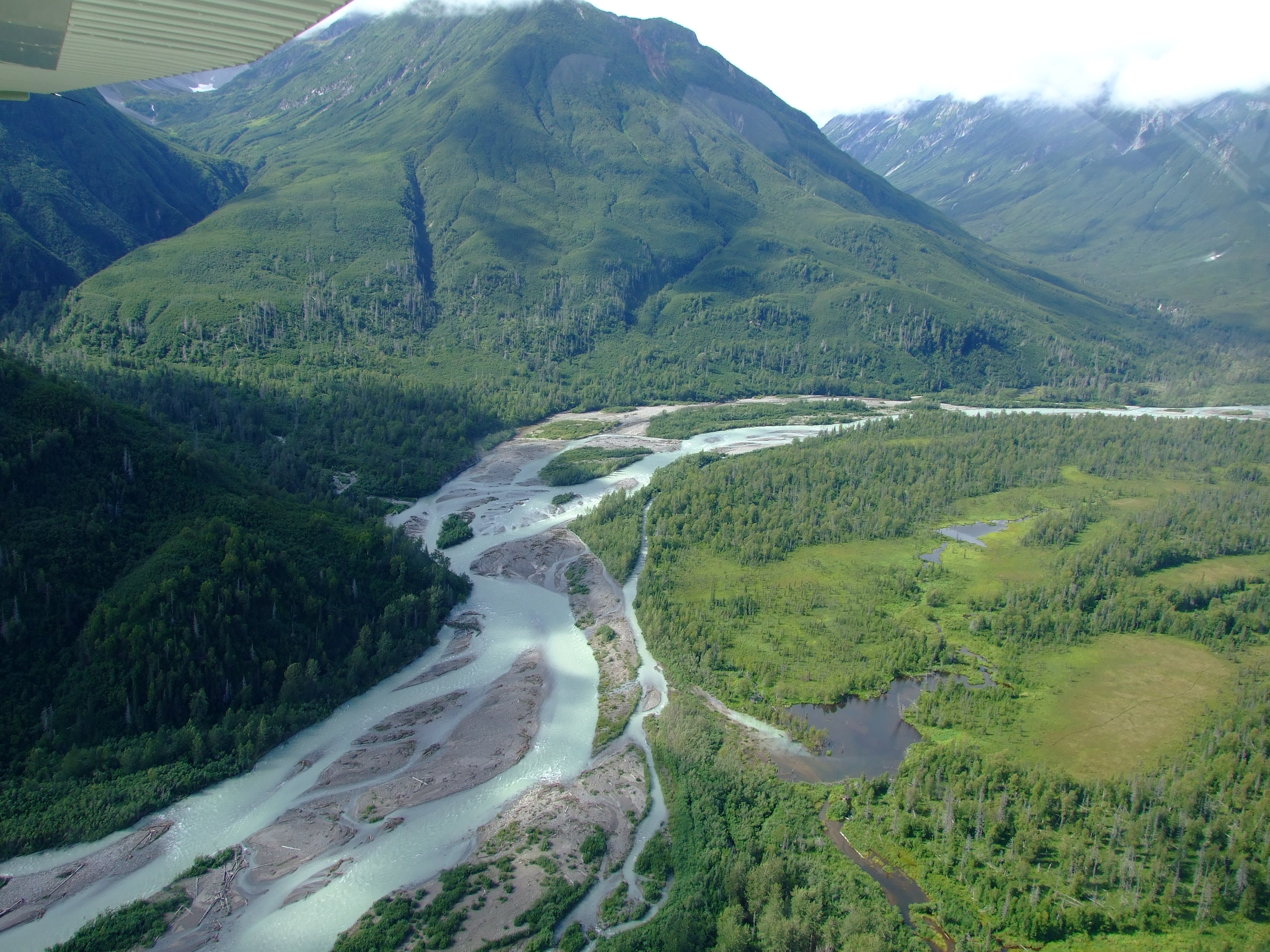 We took many photos of the braided course of the Crescent River on our return, but this is one of my favourites. It's only some light blue water and grey silt banks in a green forest landscape, but I feel that my life is richer for having seen this beautiful wild landscape and shared the view with my family.