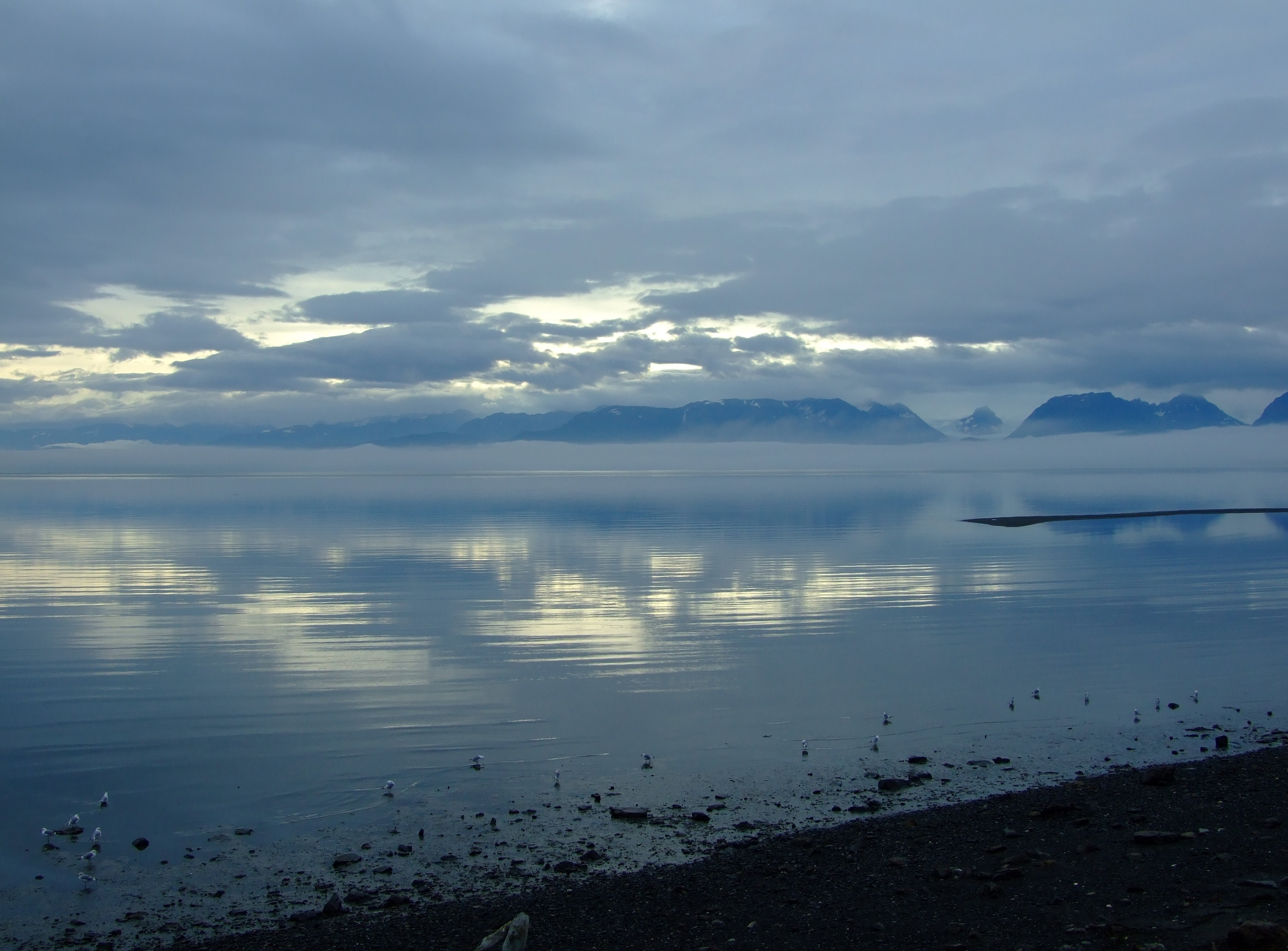 Looking east across Kachemak Bay from Homer with a none-too-hopeful amount of light in the sky.