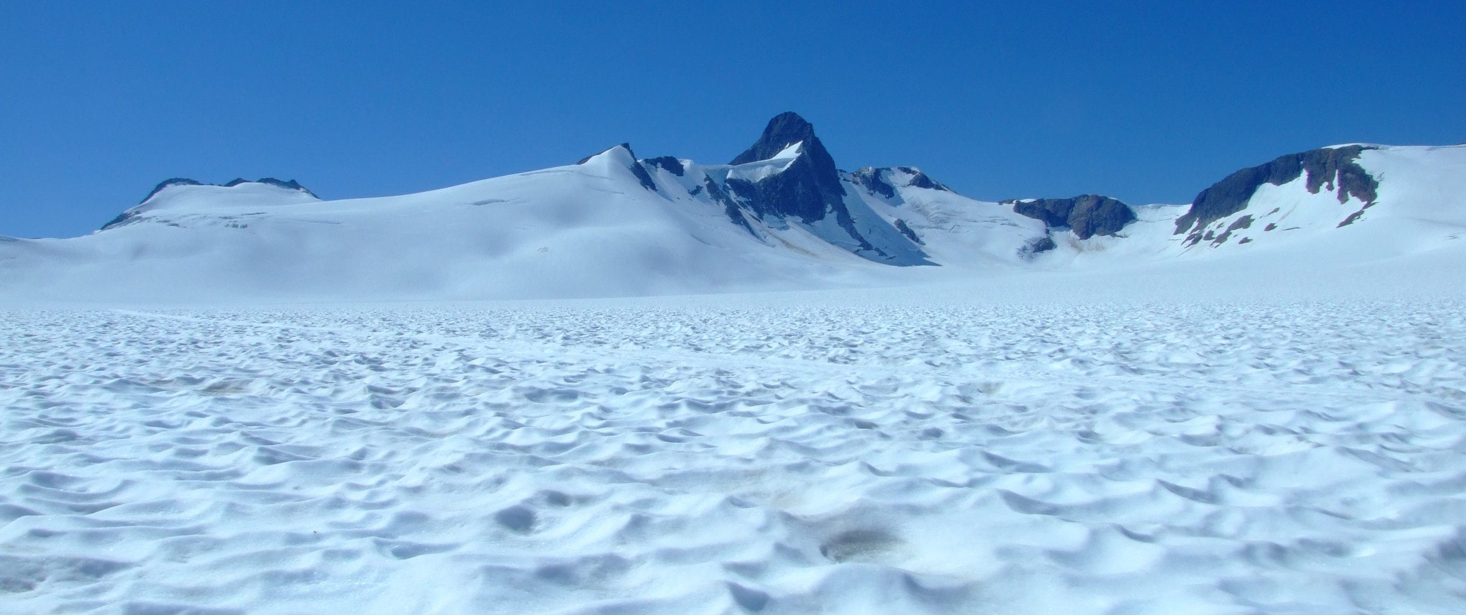 A view from a sled. The peak is Split Thumb (4,993 ft/1,522m) at the south-west extreme of the Middle Branch. On the other side is Lemon Creek Glacier