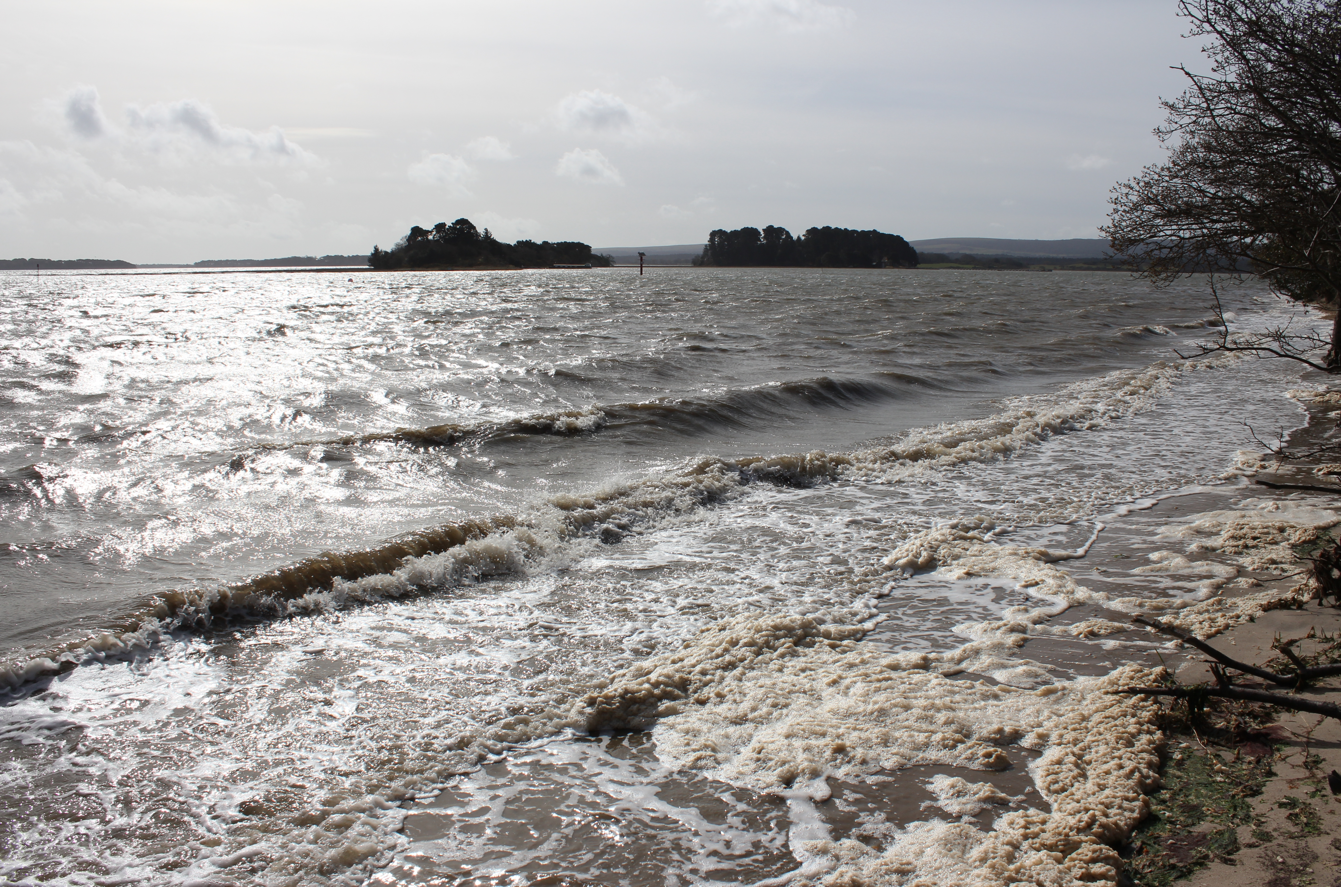 Long Island and Round Island from Shipstal Point during a windy morning and spring high tide in April 2016.