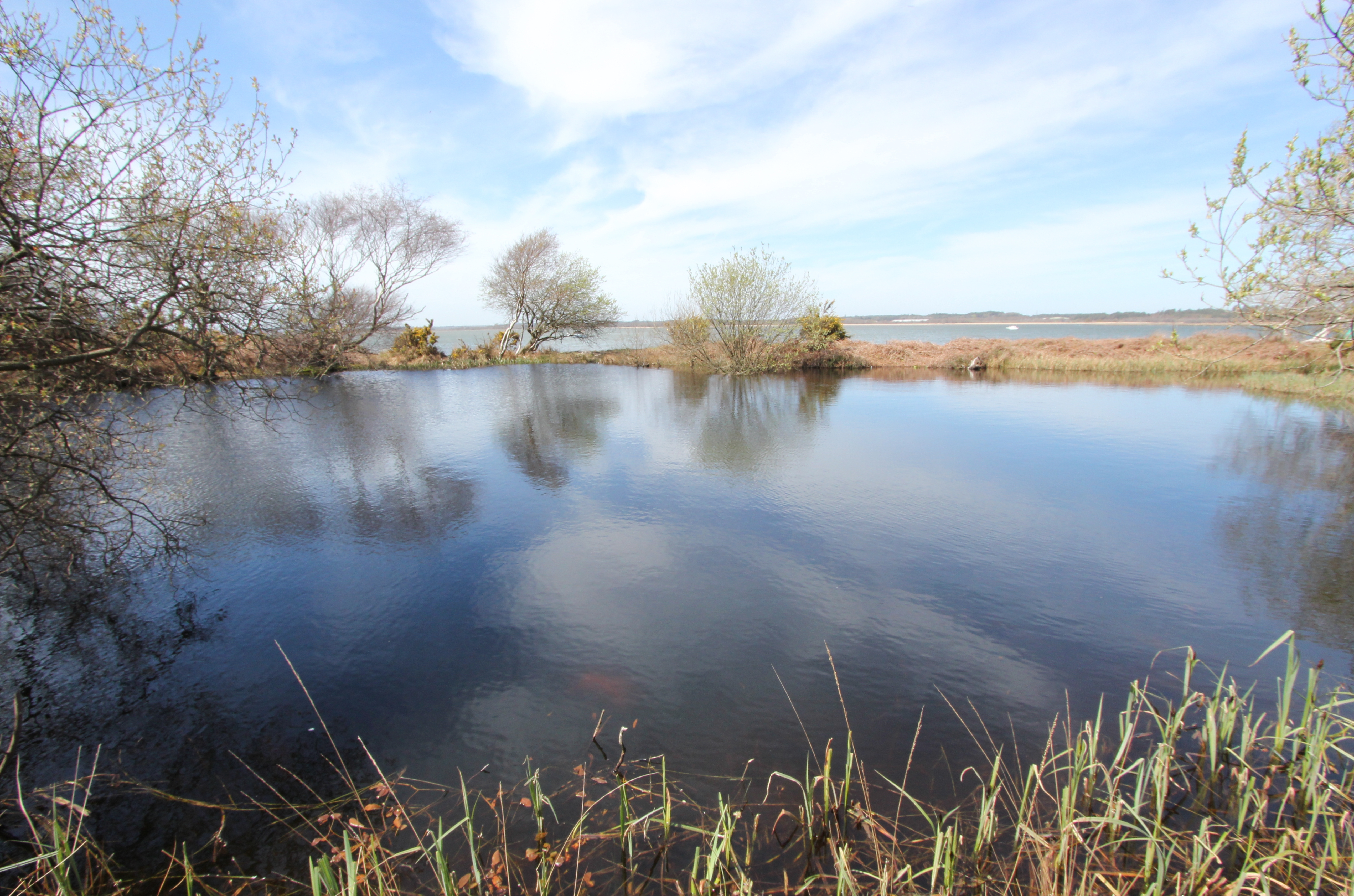 …while from the back of the larger water body to the south there is almost the appearance of it having been created as an 'infinity' pool overlooking the Wareham Channel.